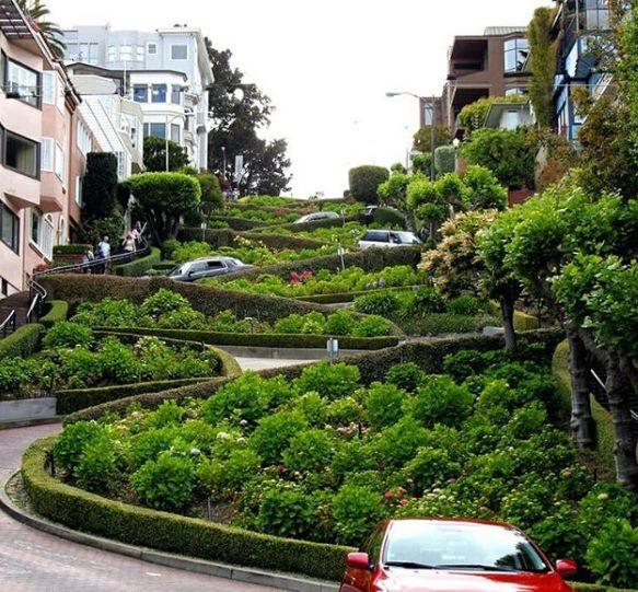 Улица в калифорнии