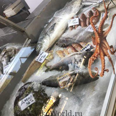Цены на рыбу в Софии столице Болгарии