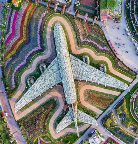 Достопримечательность в Дубаи — самолет из цветов. Что посмотреть в Дубаи.