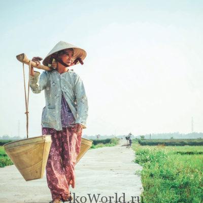 Сельское хозяйство Вьетнама